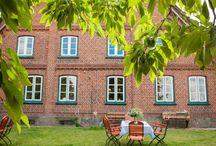 Hofläden & Hofcafés / Liebenswert ländlich - so geht es zu im Herzogtum Lauenburg. Regionale Produkte in hübschen Hofläden und Tortenstücke die kaum auf den Teller passen in urigen Hofcafés.