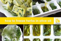 Tips / curiosities about olive oil