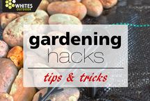 Gardening Hacks / Clever tricks and tips in the garden