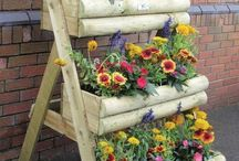 Planting flowers ideas