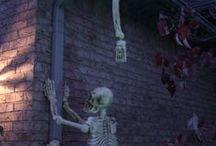 szkieletek