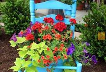 Gardening and Patio / by Susan Newman