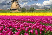 Beautifull Holland