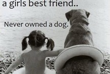 whoever said that diamonds are a girls best friend.. never owned a dog. <3
