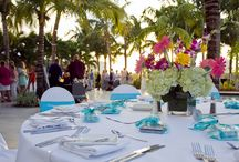 Tropical outdoors Hollywood wedding.