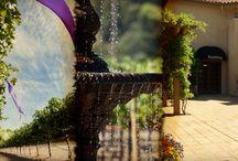 Napa Valley Wineries We Visit