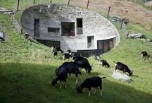 Great Architecture / by Florian Heinen