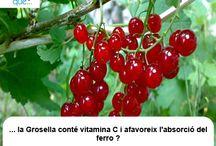 Grosella / Grosella  / Aquí trobaràs curiositats sobre la grosella / Aquí encontrarás curiosidades sobre la grosella