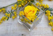 Colore giallo yellow / Giallo e ricco come l'oro
