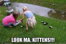 LOL! / by Emily Fredrickson