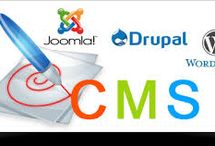 CMS Based Website Development / CMS Based Website Development India-  Logicwebsoft Technology is a fast growing IT located in Delhi, India. We provide end to end solutions for PHP development, ASP.NET development Ecommerce development, portal development, real estate portal development, travel portal development at reasonable price around the world at affordable price.