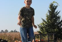 Hay Train / One of the favorite activites for kids at the farm is to run and jump on the hay train!
