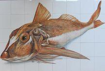Restaurante/Peixaria Vis & Dis