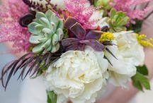 Succulenti fiori