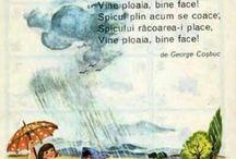 Poeziile Copilariei