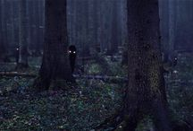 ☽ darkforest ☾