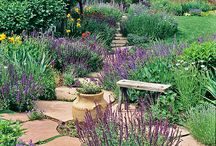 Landscaping by Corrie