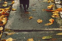 Fall in love / by littlemisscherrybomb