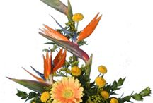 summer flower arrangements / fresh flowers for summer straight from your own gardens or fill your home with summer specials straight from your local florists