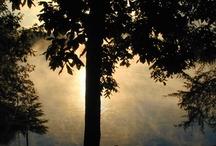 Sunrise/Sunset / by Jan Gause