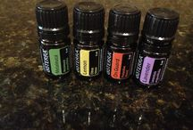 essential / The chemical makeup of essential oils gives them a host of desirable pharmacological properties - Dr Kurt Schnaubelt