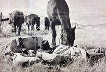 Cowboy / Cowboy, cowgirl
