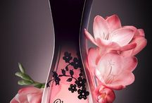 My fragrance collecton