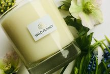 WILD PLANET | Candles / Luxury Candles | Hand poured Aromatherapy Scented Candles | Soy Wax Candles | Essential Oil Candles with therapeutic benefits to enhance your wellbeing, 100% natural fragrances | Made in England