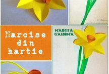 NARCISA / Daffodils craft