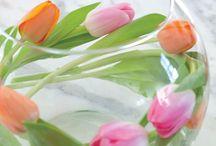 Kukkia ja asetelmia