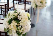 WEDDINGS!!!! / by Joyce Cameron