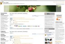 Mes sites / Les sites et blogs dont j'assure la maintenance, le suivi…