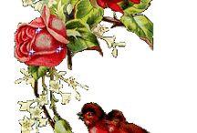 Roser og animerte  gaver