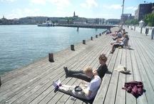 Landscape - waterfront