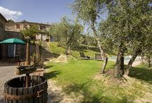 Farm in Tuscany / #farm in Tuscany ,# swimming-pool #b&b   for selling