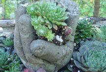 plants & garden:- DIY Hypertufa planters, info, ideas