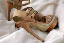 Cinderella Bradshaw