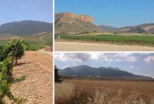 Travel -- Murcia, Spain