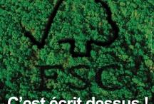 FSC / Gestione forestale responsabile significa tutelare l'ambiente naturale, portare vantaggi reali a popolazioni, comunità locali, lavoratori e assicurare efficienza in termini economici.  FSC promuove in tutto il mondo una gestione delle foreste rispettosa dell'ambiente, socialmente utile ed economicamente sostenibile.