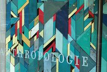 antholopogy