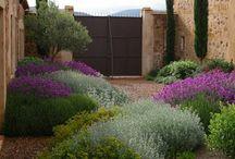 Mediteraner Garten