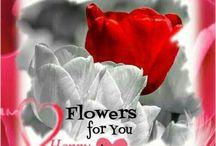 Valentine's Day Rhonda Hendricks Quotes