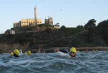 Alcatraz Swim 2012 / The South End Club's annual swim from The Rock is September 8th--Join us! / by South End Rowing Club