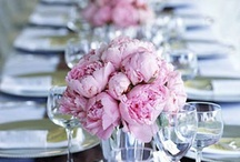 Ode to peonies / ...just because they are beautiful.