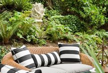 Out Door/Patio Ideas / by Teresa Cairns