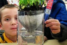 Third Science Ecosystems