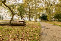 Island Gardens / #IslandsGardens #London #Victorstone www.victorstone.co.uk