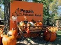 Pumpkin Patches & Corn Mazes in North Dakota