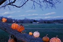 Seasonal Decor - Fall / by Andrea Hartinger