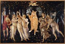Zarathustra -il gatto rosso